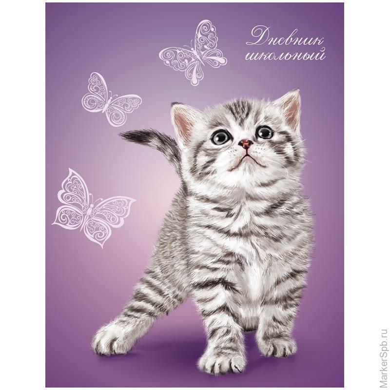 фото котёнка на личный дневник