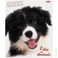 "Тетрадь 24л. линия ""I Like Animals"""